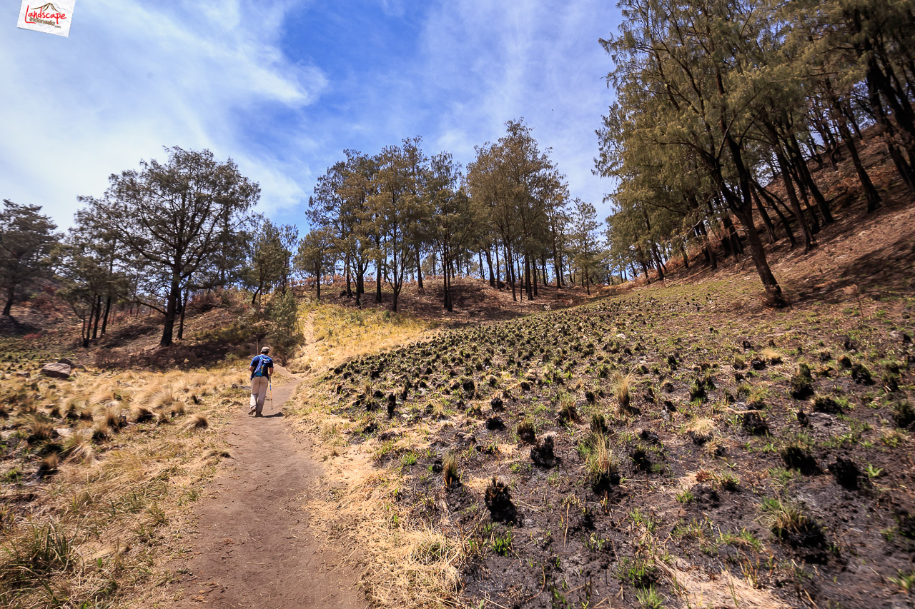 gunung lawu jalur candi cetho 16 - Pendakian Gunung Lawu Jalur Candi Cetho