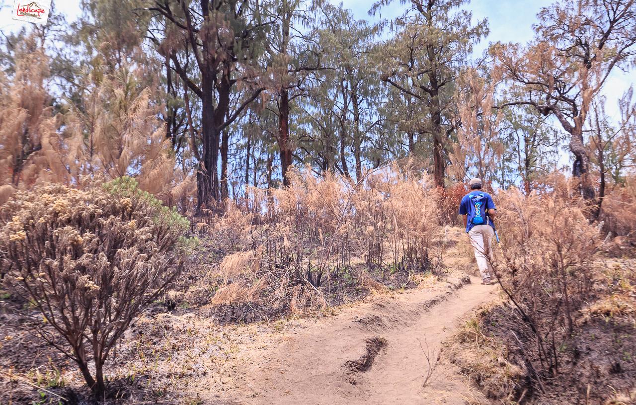 gunung lawu jalur candi cetho 19 - Pendakian Gunung Lawu Jalur Candi Cetho