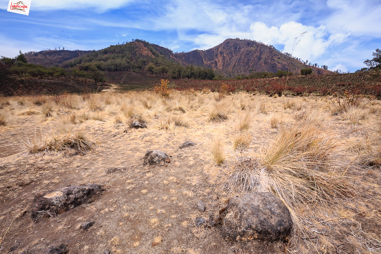 gunung lawu jalur candi cetho 20 - Pendakian Gunung Lawu Jalur Candi Cetho