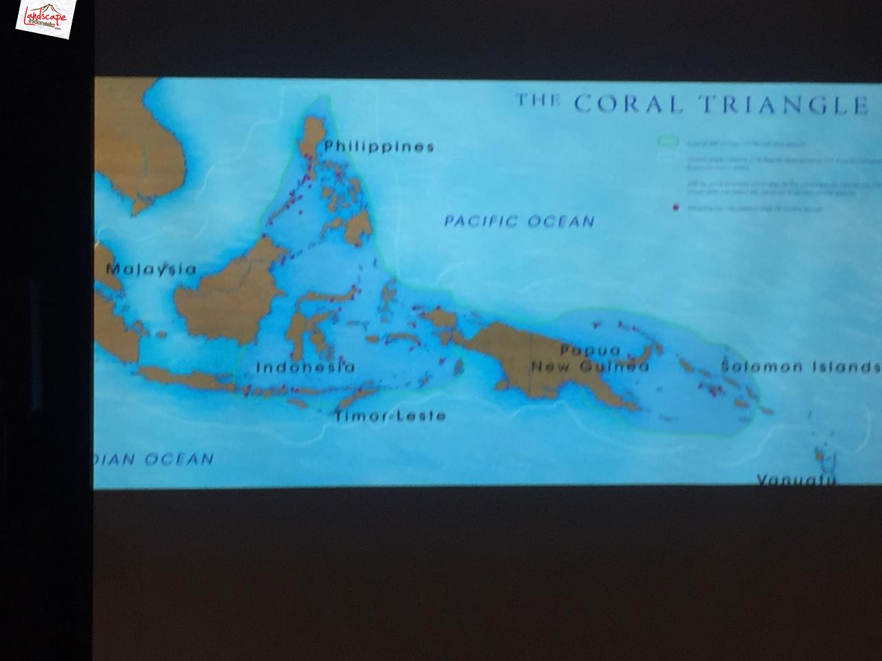 coral-triangle-photo-expedition-0