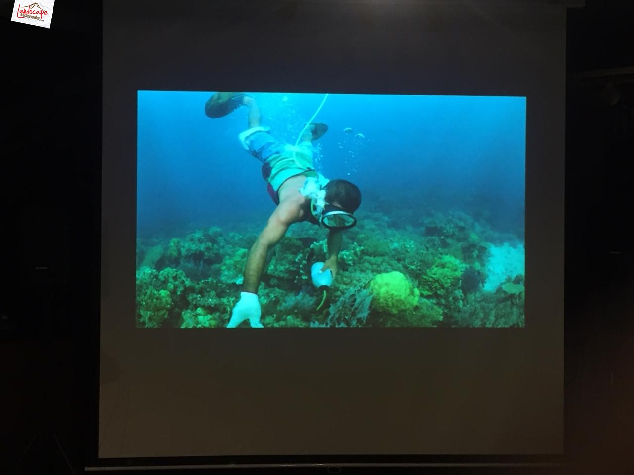coral triangle photo expedition 3 - A Journey Of A Lifetime: The Coral Triangle Photo Expedition