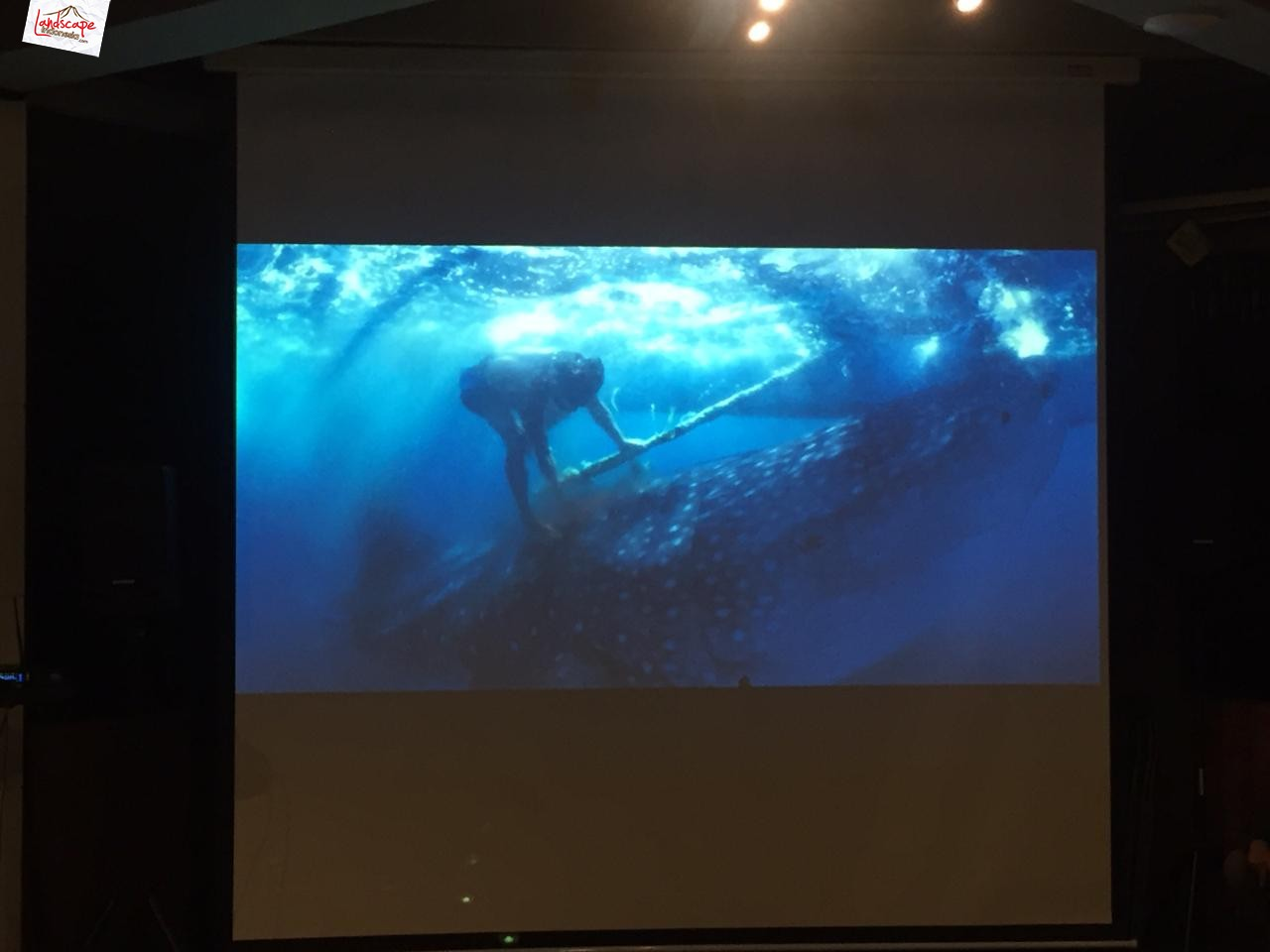 coral triangle photo expedition 4 - A Journey Of A Lifetime: The Coral Triangle Photo Expedition