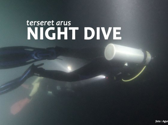 night dive 1 - Kaleidoskop Perjalanan 2018