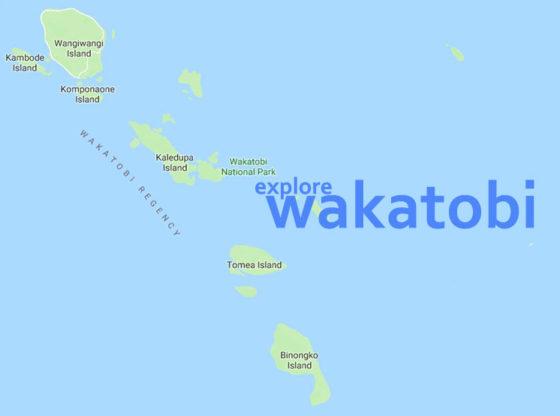 explore wakatobi 1 1 560x416 - Menikmati Pesona Wakatobi