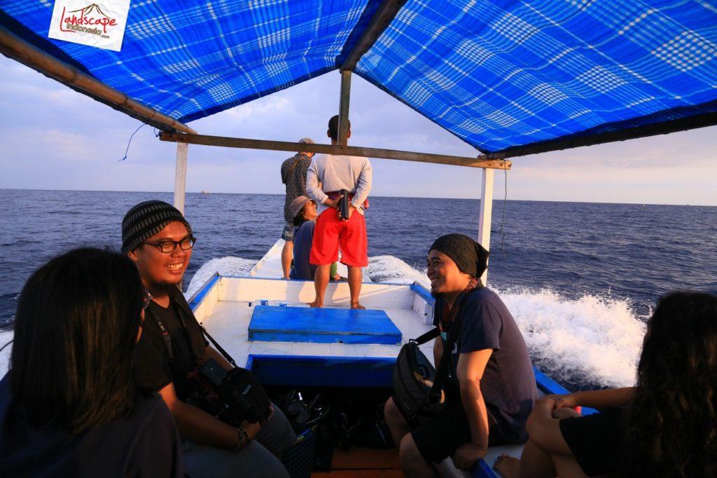 lumba lumba mola wakatobi 07 1024x682 - Discovery Scuba Diving di Wakatobi