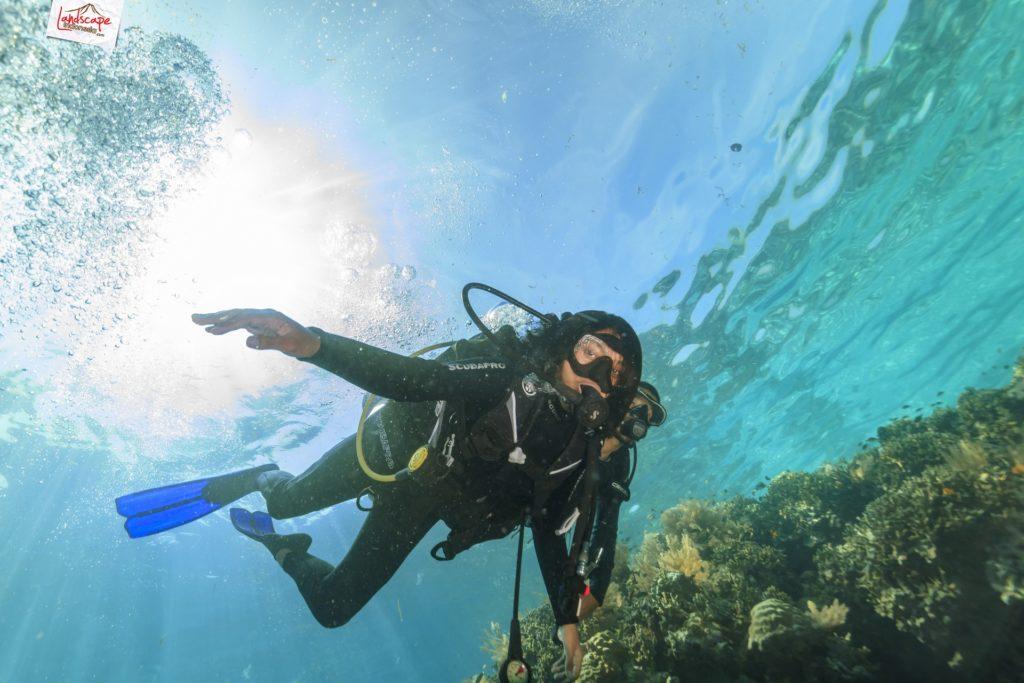 tryscuba wakatobi 11 1024x683 - Discovery Scuba Diving di Wakatobi