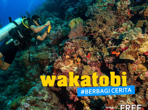 wakatobi bercerita 1 1 560x416 - Landscape Indonesia - WAKATOBI #BerbagiCerita