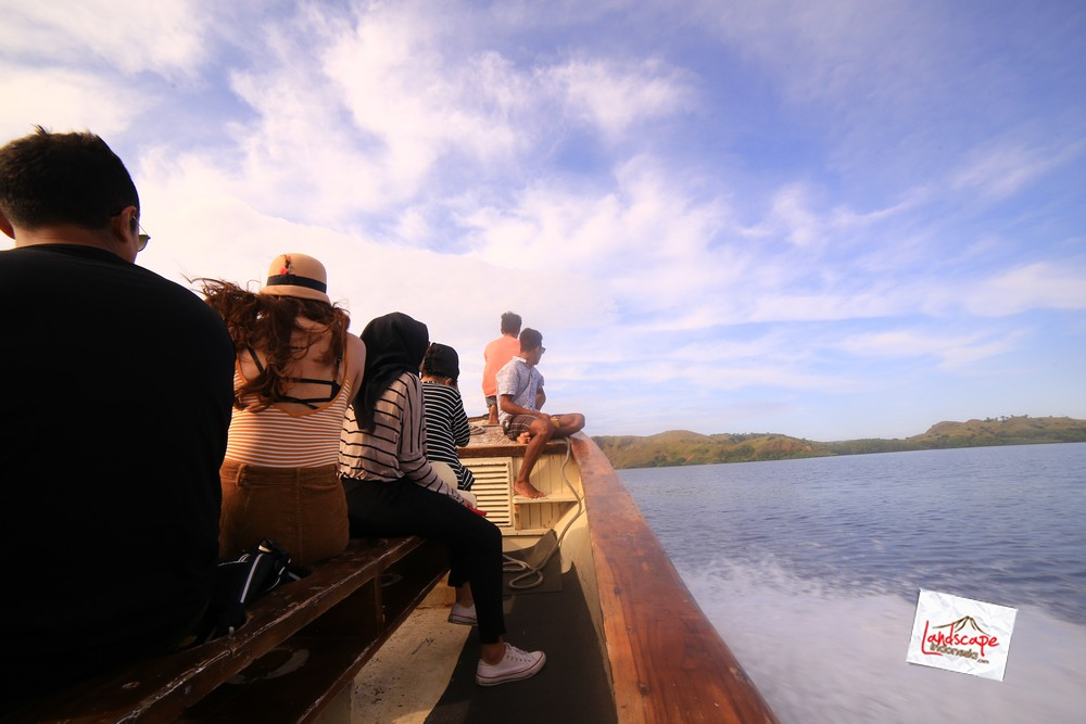 komodo d2 20 - Komodo Day 2 : Bertemu Komodo di Rinca