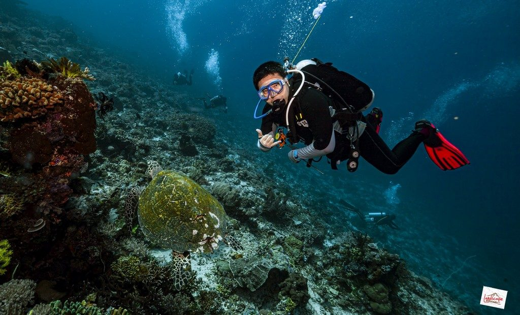 komodo6 d6 09 1024x620 - Digoyang Arus Komodo | Dive Trip | 6D5N | 8-13 Juni