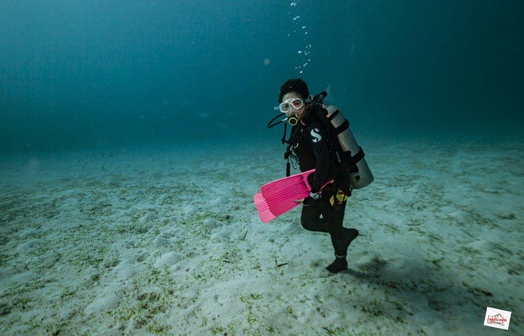 komodo6 d6 10 1024x658 - Digoyang Arus Komodo | Dive Trip | 6D5N | 8-13 Juni