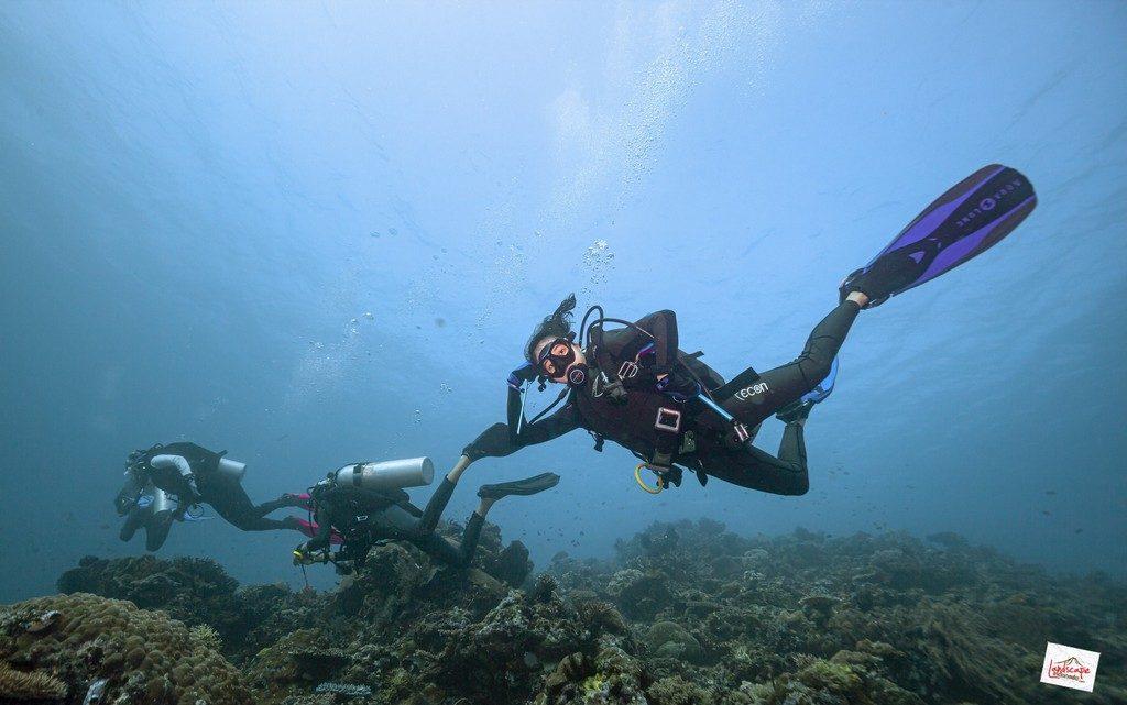 komodo6 d6 35 1024x641 - Digoyang Arus Komodo | Dive Trip | 6D5N | 8-13 Juni