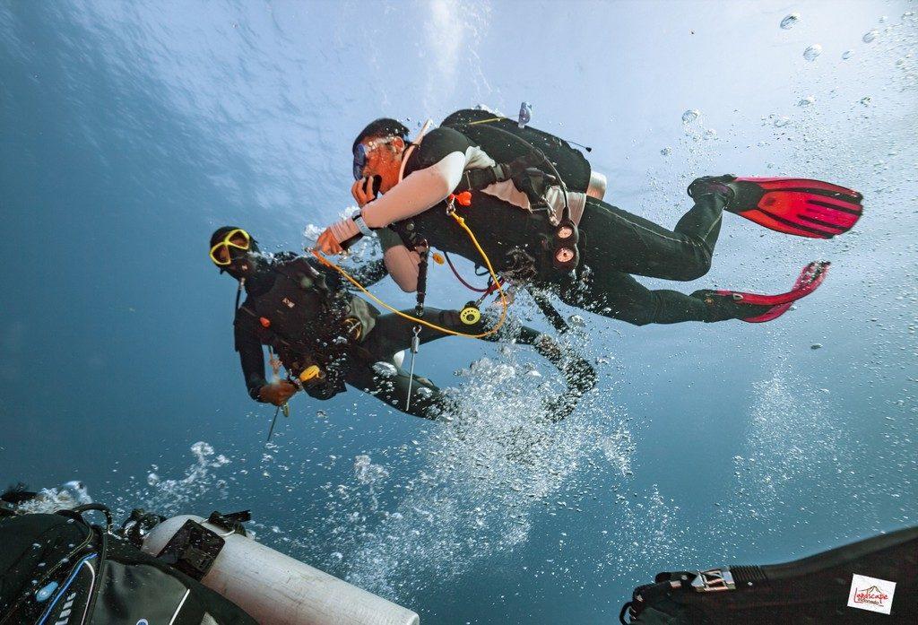 komodo6 d6 37 1024x697 - Digoyang Arus Komodo | Dive Trip | 6D5N | 8-13 Juni