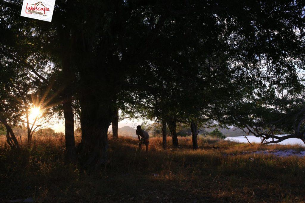 komodo 89 09 1024x682 - Komodo day 89 : Sudut Pandang Baru