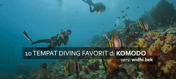 komodo favorit diving 730x330 - 10 Diving Spot di Komodo pilihan WidhiBek