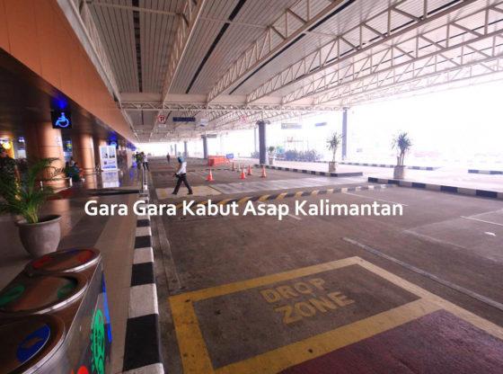 kabutasap 560x416 - Gara Gara Kabut Asap Kalimantan