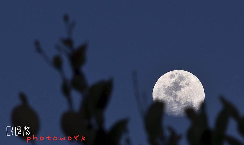 moon siloute - Lensa untuk Landscape Fotografer