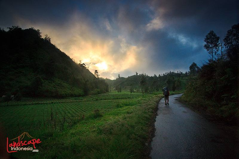 memotret hujan 01 - Tips Menguasai Fotografi Hujan