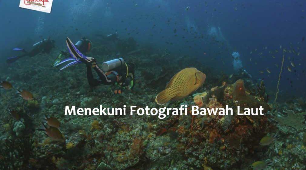 menekuni fotografi bawah laut