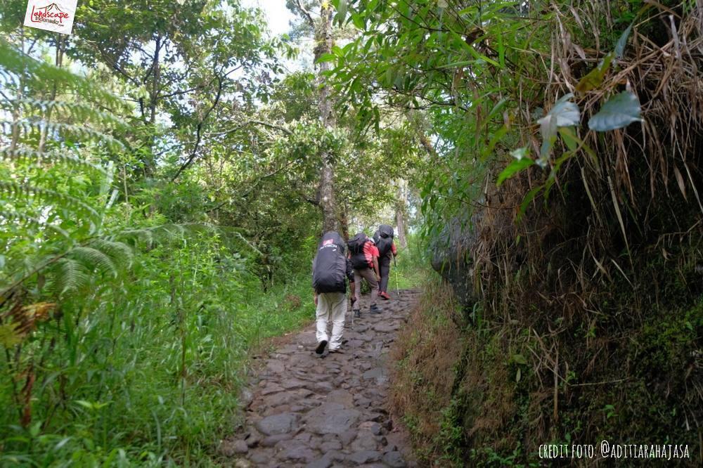 gunung lawu jalur candi cetho 15 - Gunung Lawu Jalur Candi Cetho di Kala Hujan