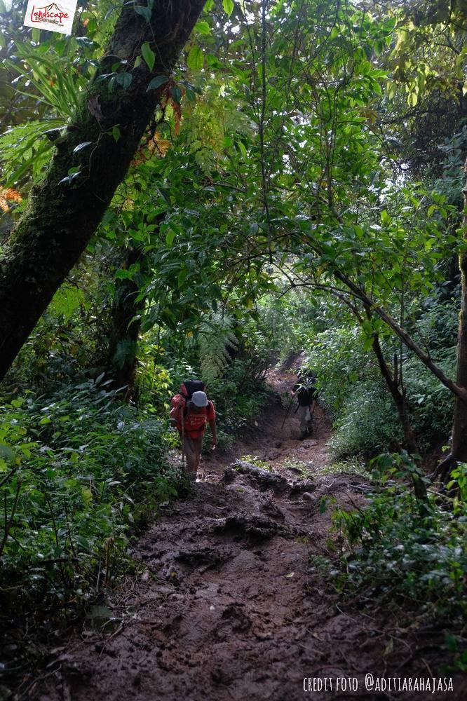 gunung lawu jalur candi cetho 20 - Gunung Lawu Jalur Candi Cetho di Kala Hujan