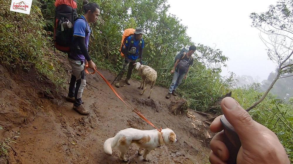 gunung lawu jalur candi cetho 29 - Gunung Lawu Jalur Candi Cetho di Kala Hujan